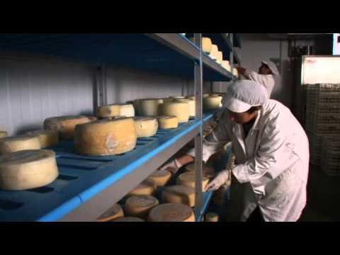 Quesos artesanos andaluces. Patrimonio etnográfico y gastronómico.
