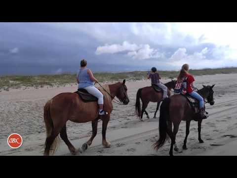 OBX Daydream | Horseback Excursion