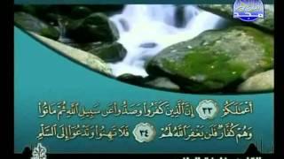 HD المصحف المرتل 26 للشيخ خليفة الطنيجي حفظه الله