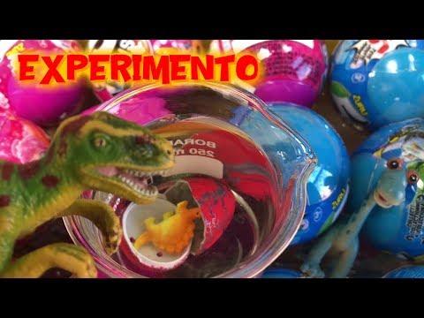 Videos caseros - Experimento casero nacimiento huevo dinosaurio en bolas sorpresa  Vídeos de dinosaurios para niños