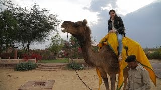 Osian India  city photos : Travel India || Jodhpur|| Reggie's Camel Camp (Osian)