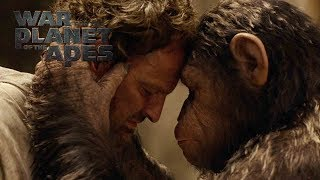 Watch Rise & Dawn for the Planet of the Apes Now!http://iTunes.com/Apeshttp://bitly.com/RiseDawnIn War for the Planet of the Apes, the third chapter of the critically acclaimed blockbuster franchise, Caesar and his apes are forced into a deadly conflict with an army of humans led by a ruthless Colonel.  After the apes suffer unimaginable losses, Caesar wrestles with his darker instincts and begins his own mythic quest to avenge his kind.  As the journey finally brings them face to face, Caesar and the Colonel are pitted against each other in an epic battle that will determine the fate of both their species and the future of the planet.In Theaters - July 14, 2017Directed By Matt ReevesCast: Andy Serkis, Woody Harrelson, Steve Zahn, Amiah Miller, Karin Konoval, Judy Greer and Terry NotarySUBSCRIBE: http://bit.ly/FOXSubscribeWatch the Final Trailer: http://fox.co/APESFINALTRAILERWatch the Official Trailer: http://fox.co/warfortheplanettrailerWatch the Teaser Trailer: http://fox.co/warfortheplanetWitness the End: http://fox.co/WitnessTheEndWatch the Compassion video: http://fox.co/CompassionMeet Nova: http://fox.co/MeetNovaVisit the Official Site Here: http://WarForThePlanet.comLike War for the Planet of the Apes on FACEBOOK: http://fox.co/ApesFacebookFollow War for the Planet of the Apes on TWITTER: http://fox.co/ApesMoviesTwitterFollow War for the Planet of the Apes on INSTAGRAM: http://fox.co/ApesMoviesInstagram#WarForThePlanetWatch Dawn of the Planet of the Apes and Rise of the Planet of the Apes on Blu-ray, DVD, & Digital HD: http://www.foxdigitalhd.com/dawn-of-the-planet-of-the-apesAbout 20th Century FOX:Official YouTube Channel for 20th Century Fox Movies. Home of Avatar, Aliens, X-Men, Die Hard, Deadpool, Ice Age, Alvin and the Chipmunks, Rio, Peanuts, Maze Runner, Planet of the Apes, Wolverine and many more.Connect with 20th Century FOX Online:Visit the 20th Century FOX WEBSITE: http://bit.ly/FOXMovieLike 20th Century FOX on FACEBOOK: http://bit.ly/FOXFacebookF