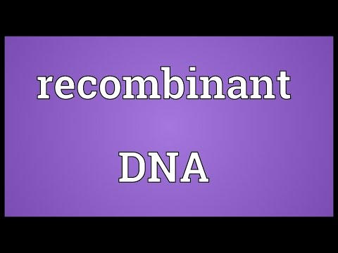 Recombinant DNA Meaning