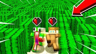Video 1v1 HALF A HEART CACTUS MAZE! MP3, 3GP, MP4, WEBM, AVI, FLV November 2018