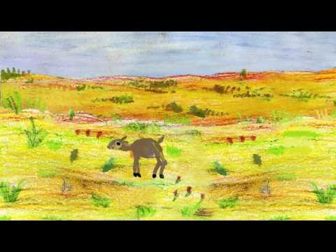 Мультфильм о молодом сайгаке