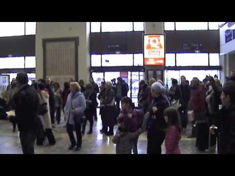 Video Flash Mob Opéra Carmen de Bizet, Toulouse, France download in MP3, 3GP, MP4, WEBM, AVI, FLV January 2017