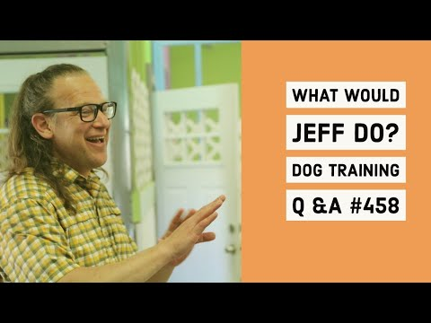 Stop dog reactivity | Stop dog growling | What Would Jeff Do? Dog Training Q & A #458
