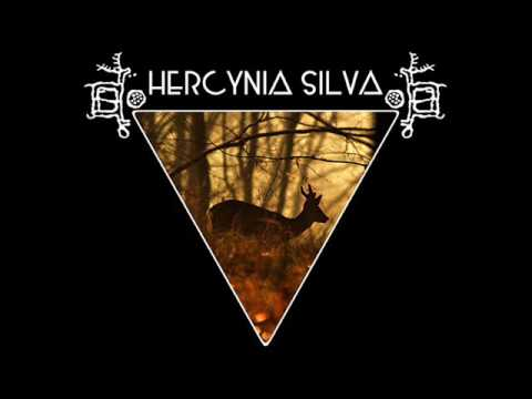 HERCYNIA SILVA