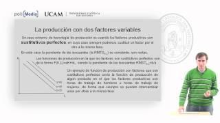 Microeconomía II - La Tecnología De Producción (8) - Alfonso Rosa García