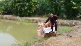 Khi Tây đi cầu cá tra ở Việt Nam.