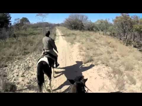 Rando en Afrique du Sud à cheval, safari au Waterberg