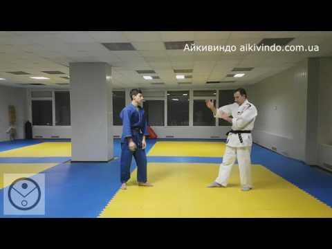 Айкивиндо. Цуки Анти-Никкё. Aikivindo. Tsukig Anti-Nikke. Aikido Lessons. 01.02.17