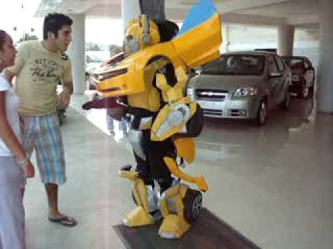 Bumblebee Costume