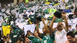 Palmeiras x Vitória - Pacaembu - Brasileirão de 2014