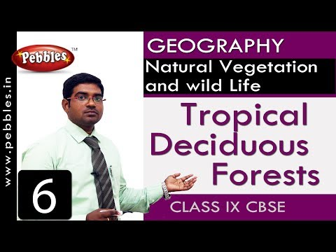 Tropical Deciduous Forests : Natural Vegetation and wild Life | Social Science | Class 9 CBSE