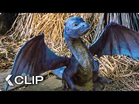 Feeding A Dragon Movie Clip - Eragon (2006)
