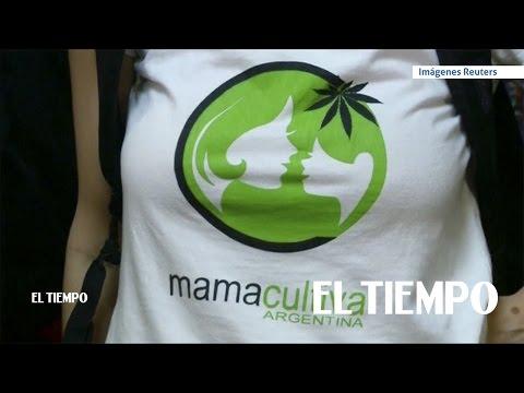 Argentina aprueba el uso medicinal de la marihuana   EL TIEMPO