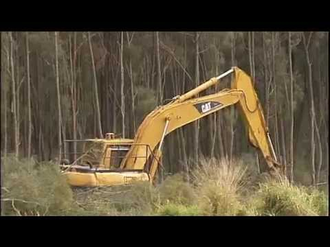 Federal Government - Federal Environment Minister Tony Burke is threatening to block a plan to allow drought-stricken Queensland graziers into certain national parks but the State Government is not backing down.