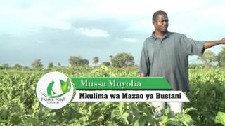 Morogoro Tanzania  city pictures gallery : FARMER POINT TANZANIA DUMILA MOROGORO YOUTUBE PROGRAM