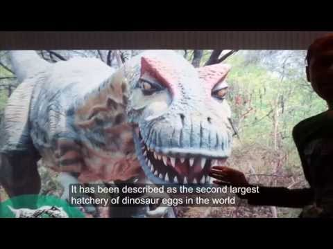 Video Indroda Dinosaur and Fossil Park, India's  first dinosaur park download in MP3, 3GP, MP4, WEBM, AVI, FLV January 2017