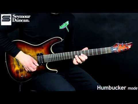 Stag Mag   Seymour Duncan
