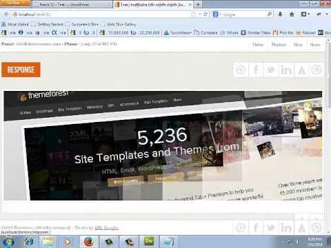WordPress Theme Options  Advanced or Premium wordpress theme development