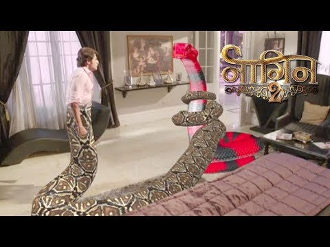 Download Naagin 2- 18th November 2017 | Today Latest News Update | Colors Tv Naagin Season 3 News 2017 HD Mp4 3GP Video and MP3