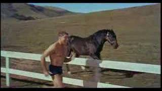 The Swimmer (1968) - Theatrical Trailer