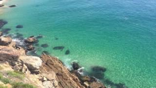 Plettenberg Bay South Africa  City new picture : Great white shark chasing seals off Robberg, Plettenberg Bay, South Africa