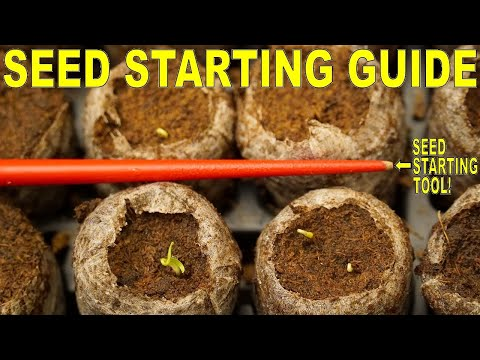 Complete Guide To Starting Seeds:This Tool Makes Seed Starting SO EASY