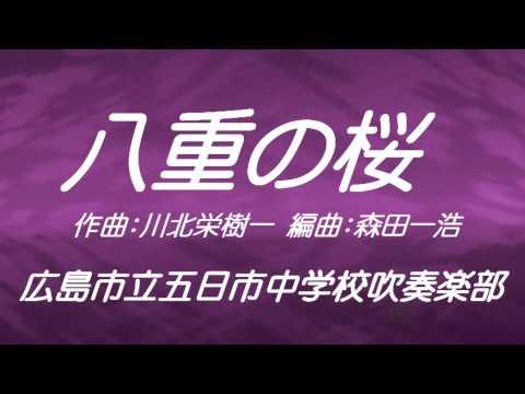 広島市立五日市中学校 八重の桜