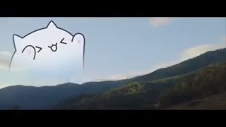 BONGO CAT 🔥 BEST COMPILATION!!!