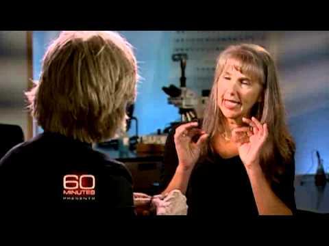 60 Minutes Presents: B-Rex