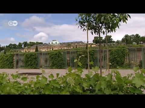 Schloss Sanssouci - das