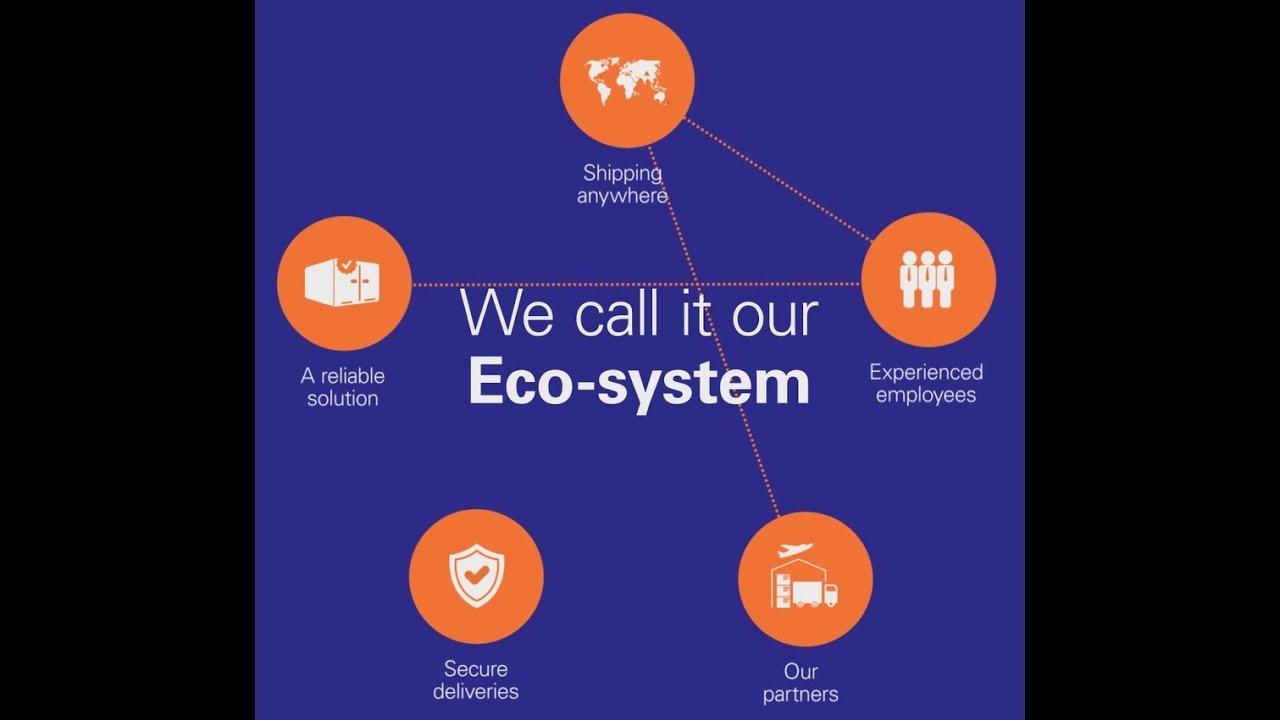 我们的生态系统