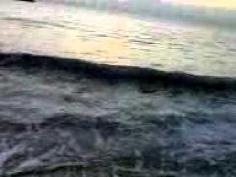 antonio e antonello taranto pesca