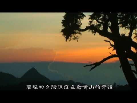 雲霧森林–大雪山國家森林遊樂區