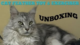 Cat Toys that Sean Coonery the BIG Maine Coon Cat Enjoys