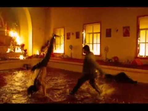 The Protector - King Vs Capoeira Maestre