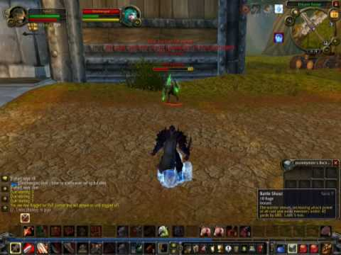 World of warcraft private server Player vs GM
