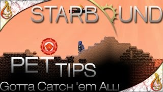 In this video we talk about tips on pets in Starbound. I'll teach you how to capture pets, heal them and use them. ▻Subscribe:...