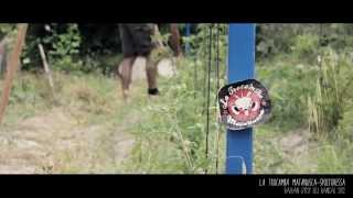 Spoitoresa - Balkan Gypsy del Bancal- La Trocamba Matanusca