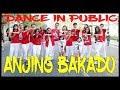 Download Lagu GOYANG ANJING BAKADO - BALASAN ANJING KACILI TETEW - DANCE IN PUBLIC - Choreography by Diego Takupaz Mp3 Free