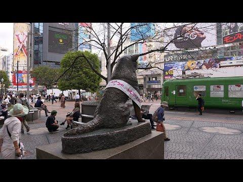 Ιαπωνία: Βόλτα σε δύο εντελώς διαφορετικές γειτονιές του Τόκιο…