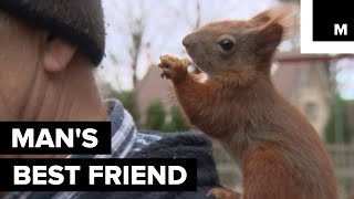 Rescued Baby Squirrel Becomes BFFs with Polish Man