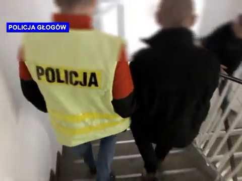 Wideo: Policjanci odzyskali skradzionego busa i towar o łącznej wartości 450 000 zł.