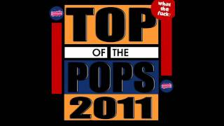 Thumbnail for Mashup-Germany — Top Of The Pops 2011