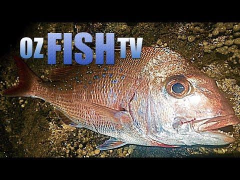 Oz Fish TV Season 3 Episode 8 - Corinella Rock Fishing