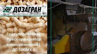Видео Пресс-гранулятор клиноременный, матрица 480