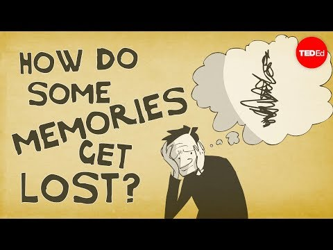 How Memories Form And How We Lose Them